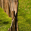 A wood fence — Stock Photo