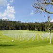American cemetery outside Florence — Foto Stock