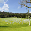 American cemetery outside Florence — Stockfoto