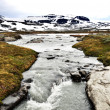 Stock Photo: Torrent in Norway