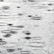 Stock Photo: Rain drops on the water surface