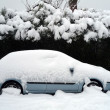 Stock Photo: Car in snow