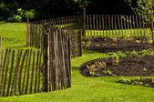 A fence in a garden — Stock Photo