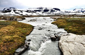 A torrent in Norway — Stock Photo
