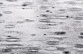 Rain on the water surface — Stock Photo