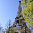 The Eiffel Tower — Stock Photo #7682456