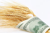 Wheat and dollars — Stock Photo