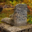 Old Jewish cemetery in Ukraine — Stock Photo #6966711