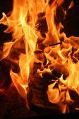 Burning fire close-up — Stock Photo