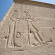 Hieroglypic carvings on an egyptian temple — Stock Photo #6746267