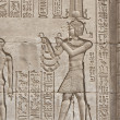 Hieroglypic carvings on an egyptian temple — Stock Photo #6746661
