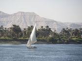 Sailing felluca on the river Nile — Stock Photo