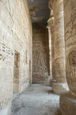 Hieroglypic carvings in an egyptian temple — Stockfoto