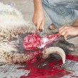Sheep being traditionally killed for the Eid festival - ストック写真