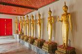 Beaucoup de la statue de bouddha doré debout — Photo