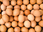 Top view of egg — Stock Photo