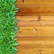 Left Green Grass on Wood — Foto Stock