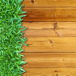 Left Green Grass on Wood — Foto de Stock