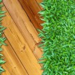 Foto Stock: More Right Green Grass on Wood