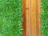 More Left Green Grass on Wood — Stock Photo