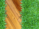 More Right Green Grass on Wood — Stock Photo