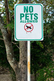No pets allowed Green and white sign — Stock Photo