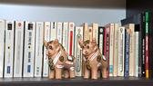 Knihy knihovny a cetky — Stock fotografie