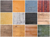 Set of textures of wood — Stock Photo
