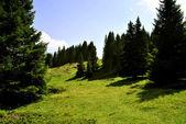 горные плато — Стоковое фото