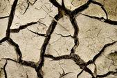 Desierto seco — Foto de Stock