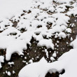 Stock Photo: Snowy meadow