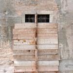 Old wooden door — Stock Photo #7350993