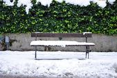Neve parque público — Fotografia Stock
