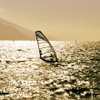 Stock Photo: Windsurfer