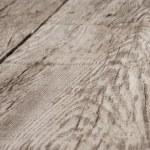 Beech wood texture — Stock Photo