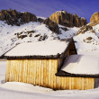 Stock Photo: Mountain house