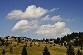 Alpine plateau — Stock Photo