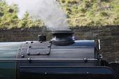 Parní lokomotiva vlak. — Stock fotografie