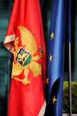 Montenegrin and European flag — Stock fotografie
