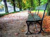 Empty bench in lazienki park, warsaw, poland — Stock Photo