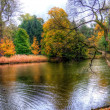 Autumn trees in lazienki park, warsaw, poland — Stock Photo