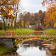 Chinese Bridge in Alexander`s park — Stock Photo
