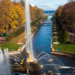 Stock Photo: Fountains in the park, Petergof Russia
