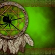 Dreamcatcher with spider — Stock Photo #7585159