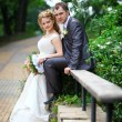 Stock Photo: Bride and groom in park