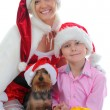 Cheerful boy in Santa Claus hat — Stockfoto