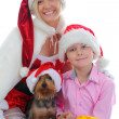 Stock Photo: Cheerful boy in Santa Claus hat