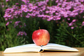 Apple with Book in Garden — Stock Photo