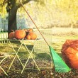 Racking leaves and preparing for Halloween - 图库照片