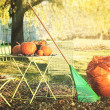 Racking leaves and preparing for Halloween - Stockfoto